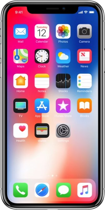 Apple iPhone X A1902 TD-LTE JP 256GB  (Apple iPhone 10,3)