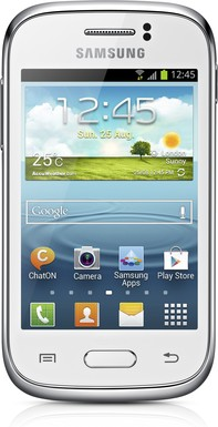 Samsung GT-S6310N Galaxy Young